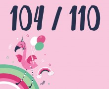 DIY-Nähset Kleidchen - Flamingo - Größe 104/110 Jersey - NIKIKO - zum selber Nähen