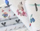 Sweat - bunte Vögel - Grau Meliert