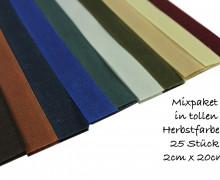 Klettband - Mixpaket - Herbst - 25 Stück - 2cm x 20cm
