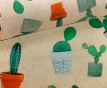 Feste Baumwolle - Kaktus - Kakteen - Apricot Hell