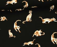 Javanaise - Blusenstoff - Siamkatzen - Cats - Braun/Schwarz