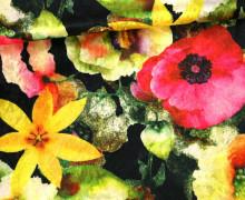 Samt - Blumen - Sternblumen - Royal - Schwarz