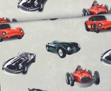 Leichter Kuschelsweat - Race Cars - Autos - Rennwagen - Grau