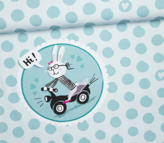 Jersey - RollerHase - Punkte - Ostern - Paneel - Mint - Bio Qualität - formenfroh - abby and me