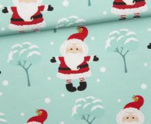 Sommersweat - Bio Qualität - Let It Snow - Weihnachtsmann - Weihnachten - Mint - abby and me