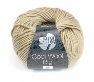 1 extrafeine Merinowolle - Cool Wool Big - 120m - Lana Grossa - Dunkelbeige (685)