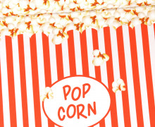 Jersey - Bio Qualität - Paneel - Popcorn Party - abby and me