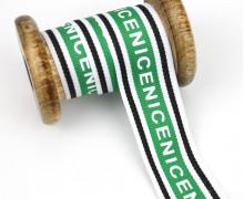 1 Meter Zierband - Dekoband - Einfassband -  30mm - Nice - Streifen - Weiß/Grün