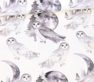Sommersweat - Ecru - Bio Qualität - Black And White Collection - Observant Owls - abby and me