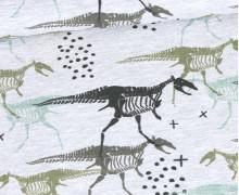 Jersey - Dino Skeleton - Grau Meliert - abby and me