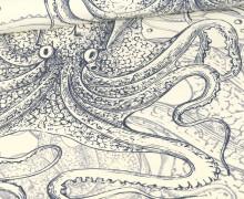 Sommersweat - Meerestiere - Oktopus - Paneel Rapport - Ecru - Bio Qualität - abby and me