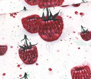 Sommersweat - Raspberry Friends -  Bio Qualität - Weiß - mr design - abby and me