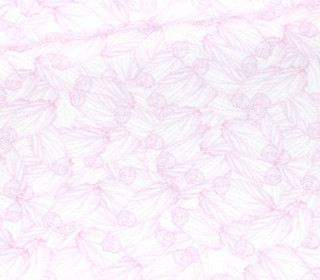 Jersey - MamaFee - Kombistoff - Bio-Qualität - Weiß - Wildblume Illustration - abby and me
