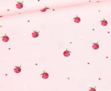 Modal - Jersey - Blumenmädchen - Himbeeren - Kombistoff - Altrosa - Bio-Qualität - abby and me
