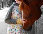 Jersey - Ponyhof - Pferde - Rebekah Ginda